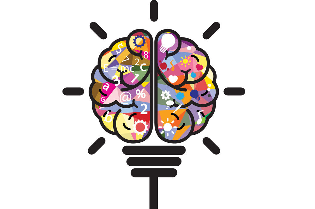 Brain Facts and Brain Games for Families